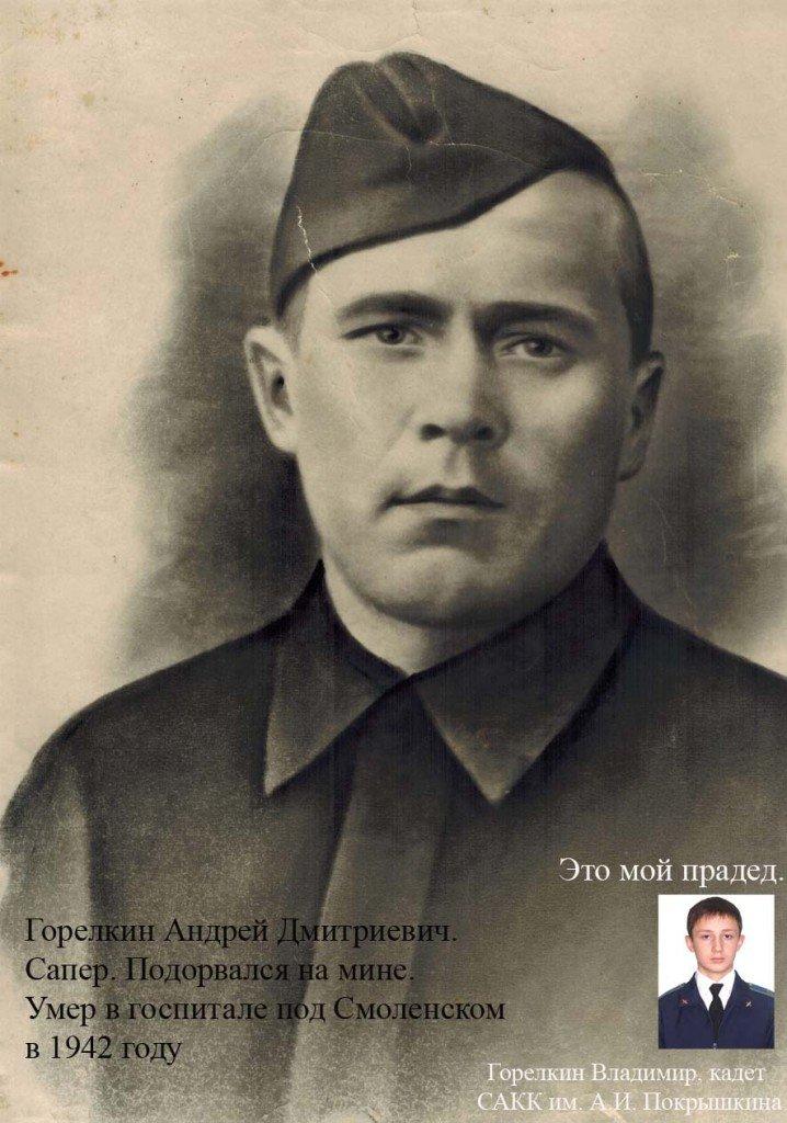 Горелкин Андрей Дмитриевич копия